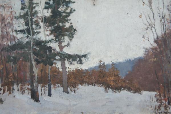 Александр Николаевич Шелюто. Зимний лес.