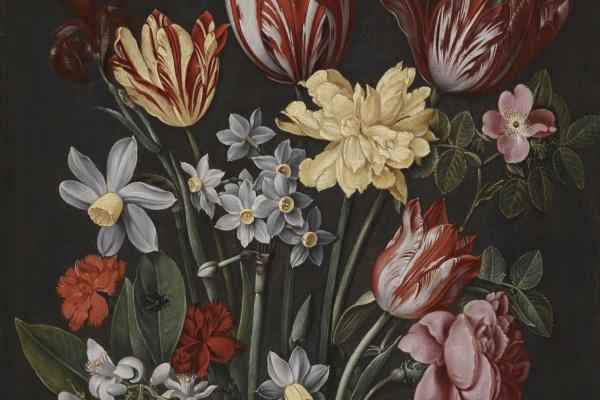 Якоб ван Хюльсдонк. Натюрморт с тюльпанами, нарциссами, гвоздиками и другими цветами в вазе