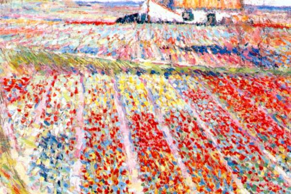 Рафаэль Санти. Тюльпановое поле