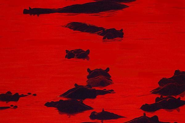 BAS. Красный рассвет на реке
