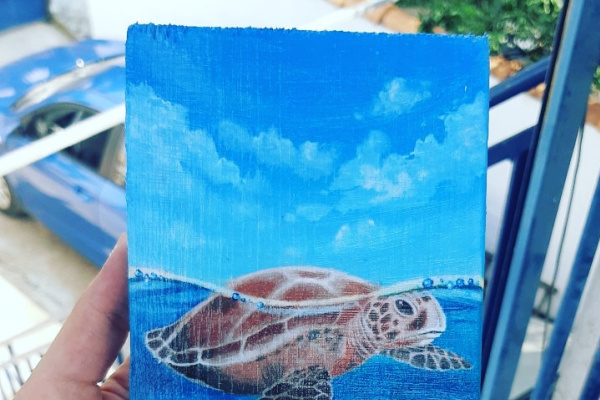 (no name). Sea turtle