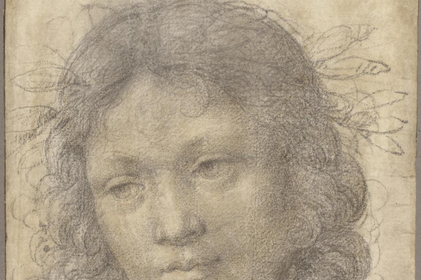 Lorenzo di Credi. The head of a young boy, crowned with laurel