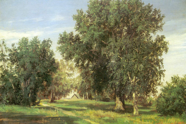 Сергей Николаевич Аммосов. Лесная поляна