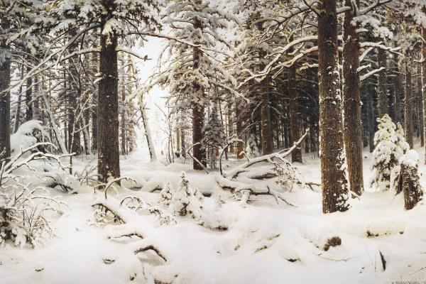Иван Иванович Шишкин. Зима