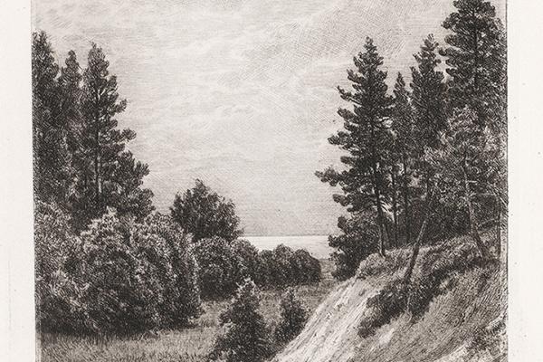 Иван Иванович Шишкин. В Сестрорецке