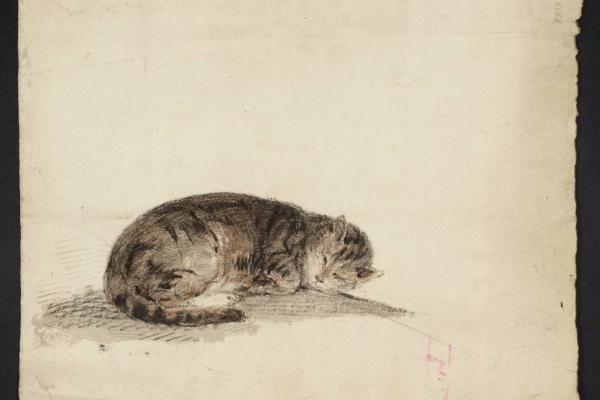 Джозеф Мэллорд Уильям Тёрнер. Набросок спящей кошки