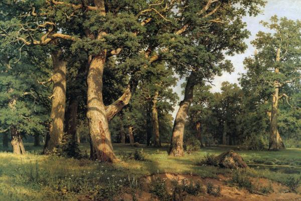 Ivan Ivanovich Shishkin. Oak grove