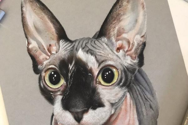 Elena Tkachenko. Cat