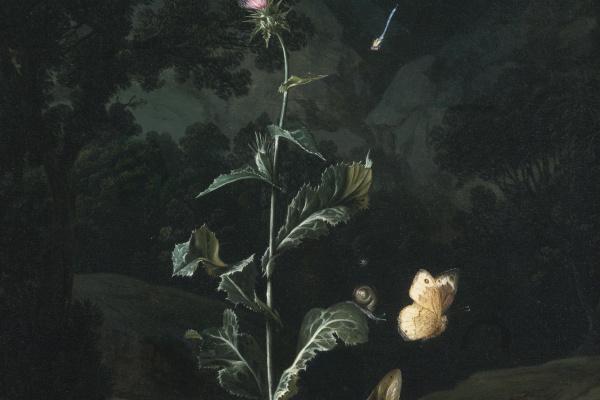 Otto Marceus van Scriec. Still life night in the woods