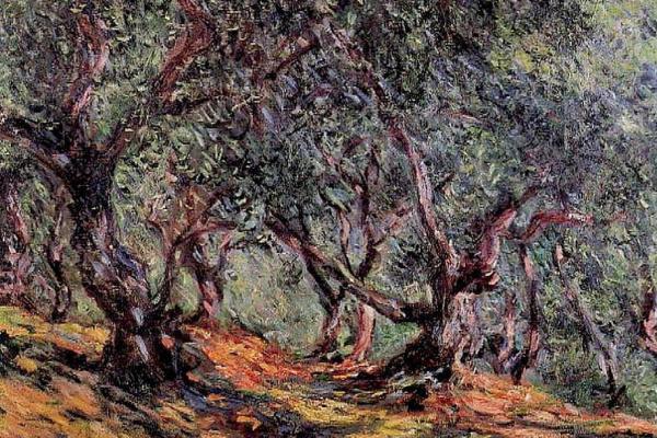 Клод Моне. Оливы в Бордигере