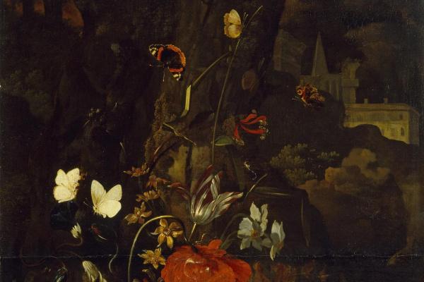 Otto Marceus van Scriec. Flowers, butterflies and snakes