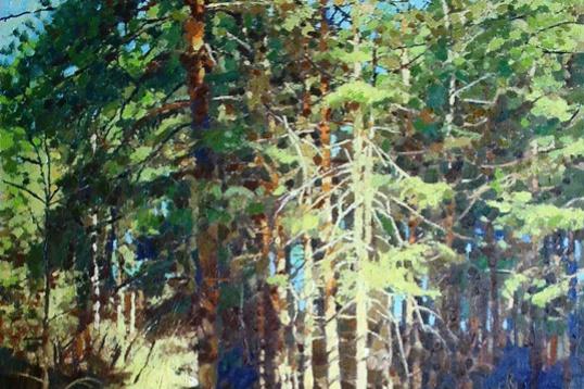 Michael Mine. Pines
