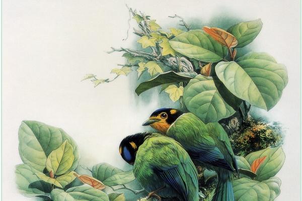 Zeng Xiao Lian. Birds 23
