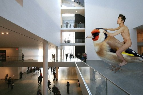 Contemporary Art Residence