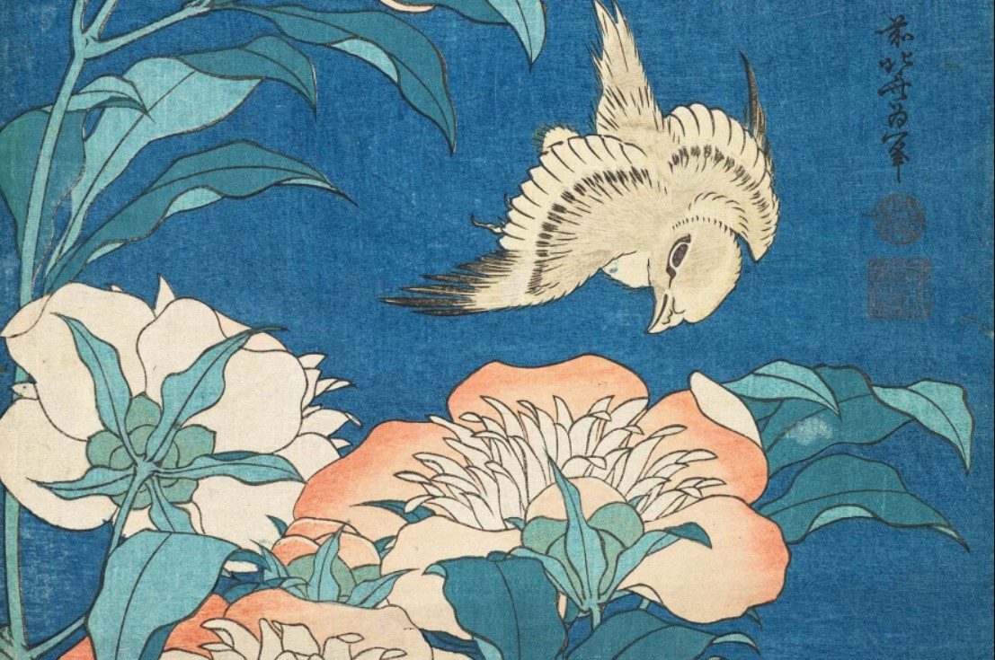Царь цветов: пионы в восточной живописи