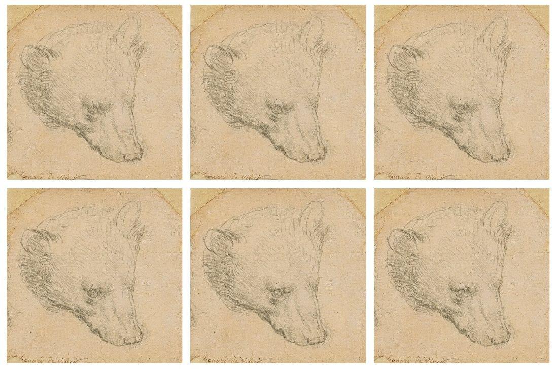 """Крошечный медведь да Винчи оценён в $17 млн и выставлен на аукцион. Возможно, он """"родственник"""" горностая со знаменитого портрета (обновлено)"""
