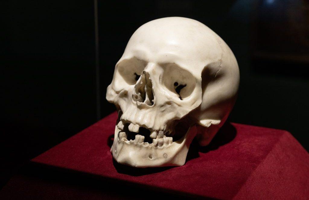 Череп из немецкого замка оказался работой Бернини
