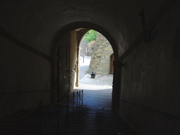 Сотня фигур Энтони Гормли оккупировала форт во Флоренции