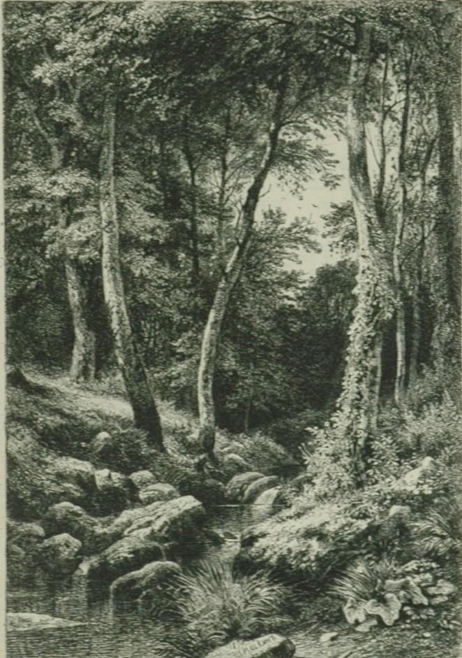 Ivan Ivanovich Shishkin. Stream in the forest