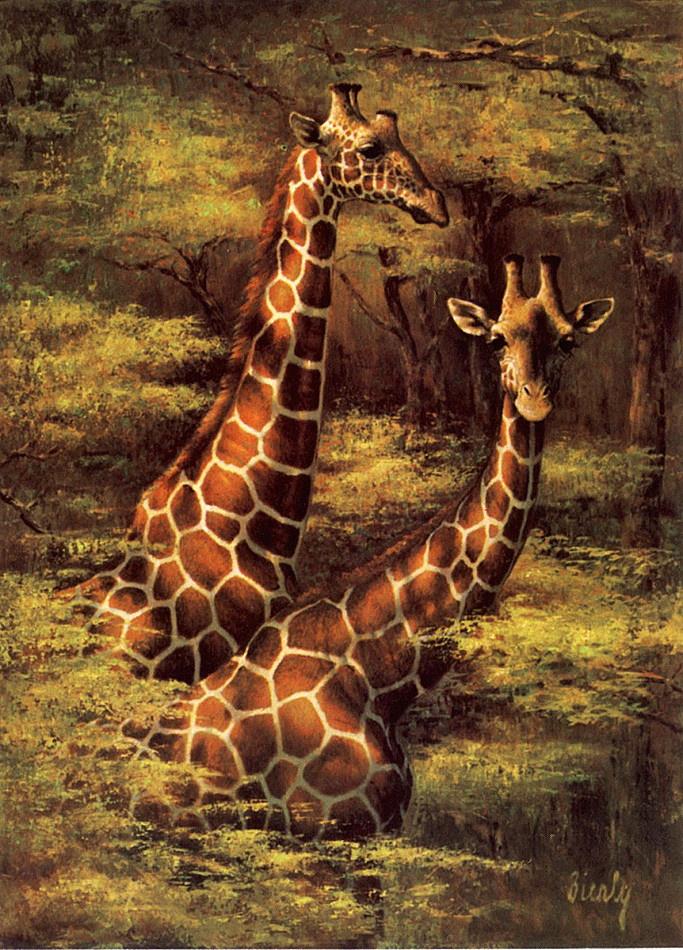 Эдвард Биерли. Жирафы