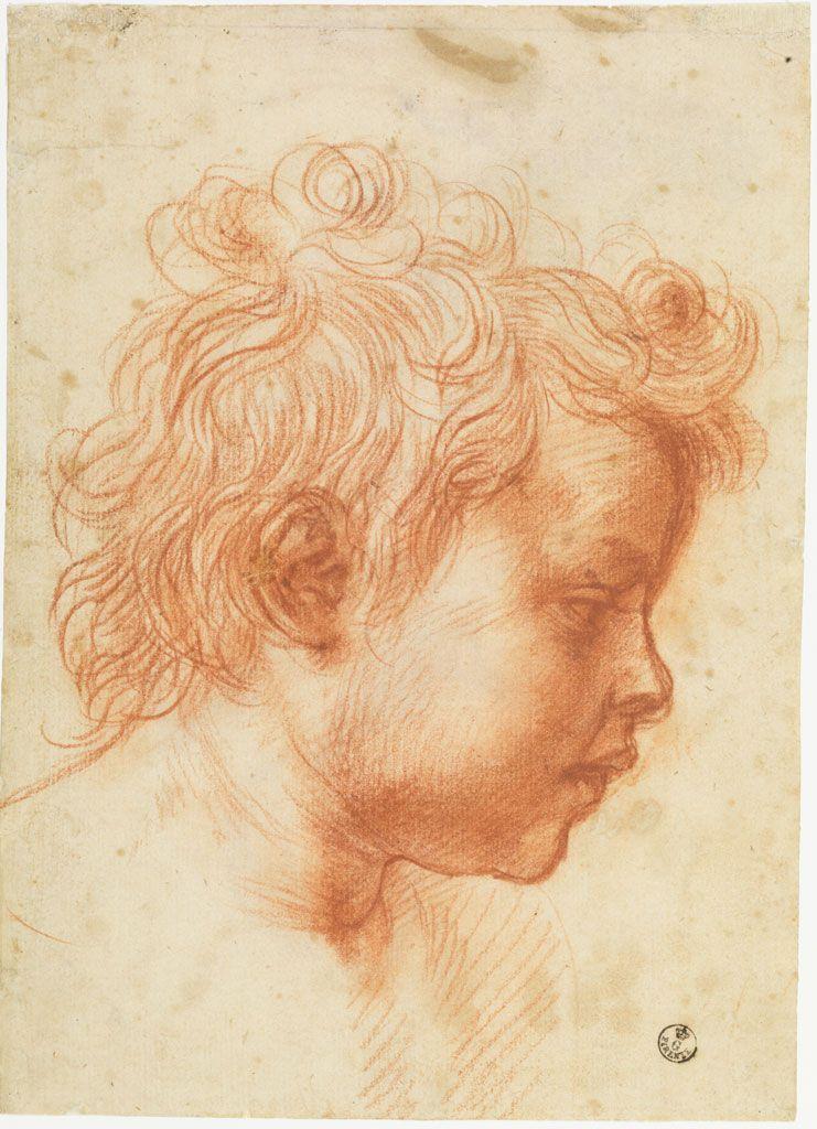 Андреа дель Сарто. Голова ребенка в профиль вправо