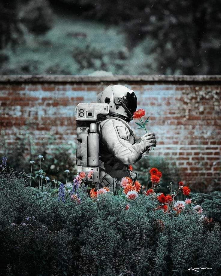 James Fulkler. Astronaut walking in the middle of a flower garden