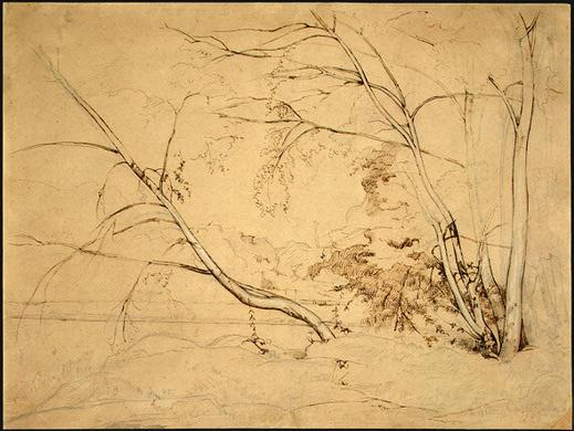 Камиль Коро. Деревья