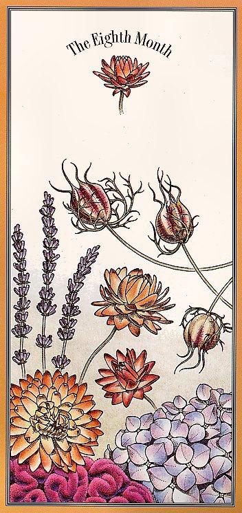 Цветочный календарь. Август