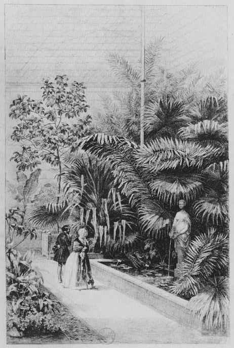 Шарль-Франсуа Добиньи. Внутренний вид Большой оранжереи