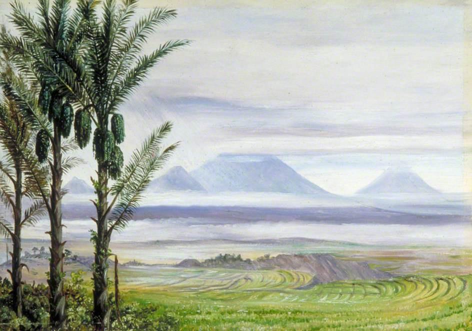 Marianna North. Sugar palm trees and volcanoes, Java