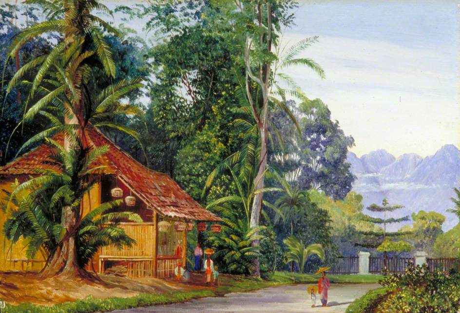 Marianna North. Gardener's Lodge in Botanical Garden, Java