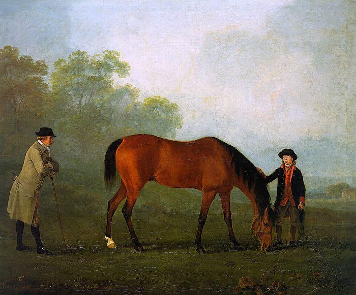 Gilpin. Stallion