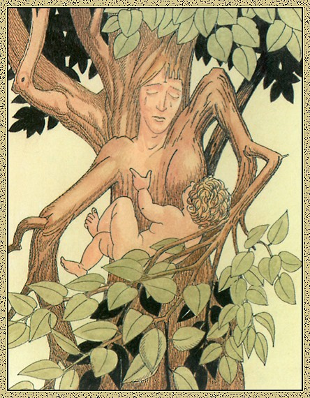 Джованни Казелли. Дерево и ребенок