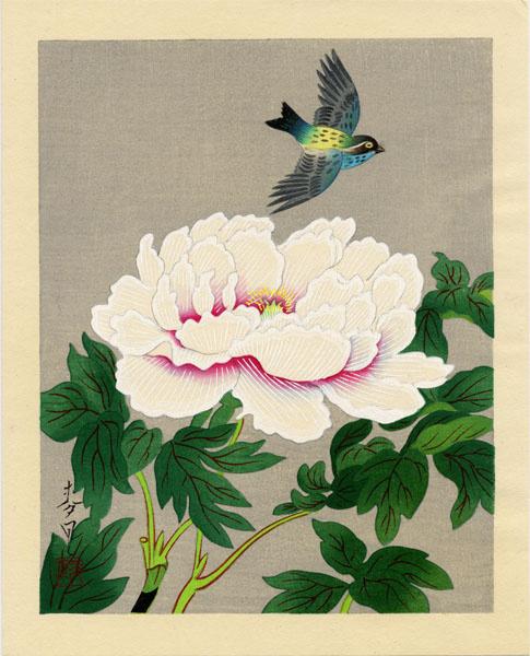 Baku Ono. Bird and peony