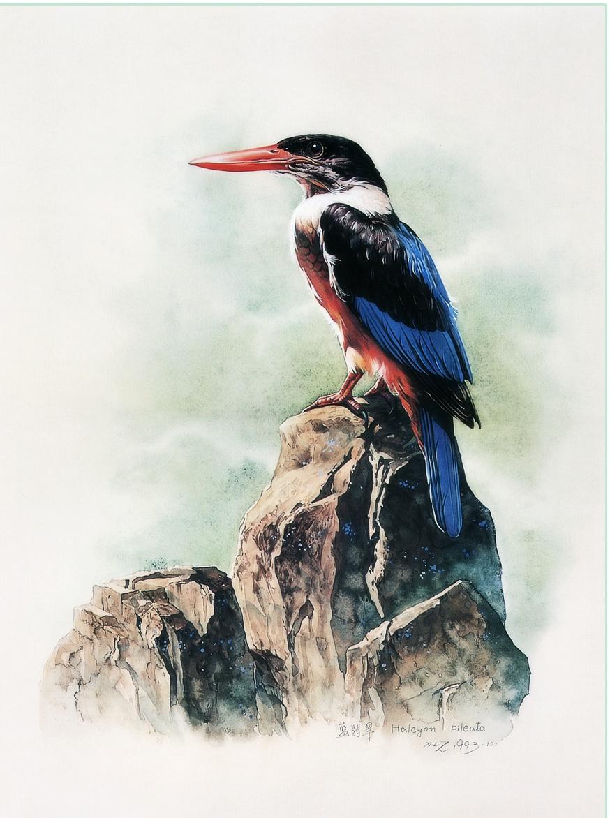 Zeng Xiao Lian. Birds 39