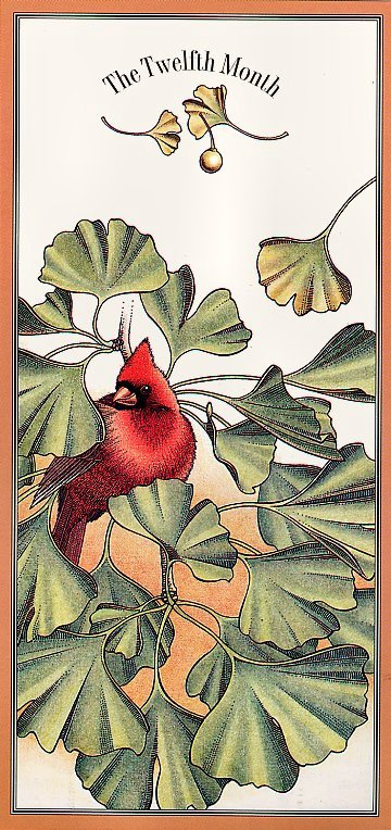 Офа. Цветочный календарь. Декабрь
