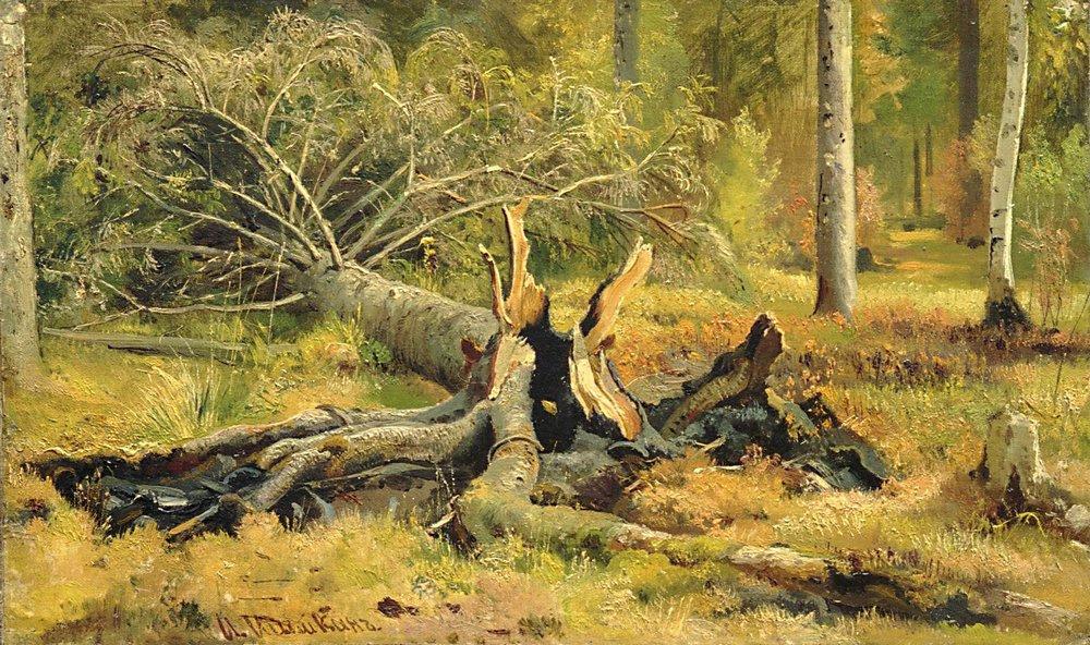 Иван Иванович Шишкин. Упавшее дерево