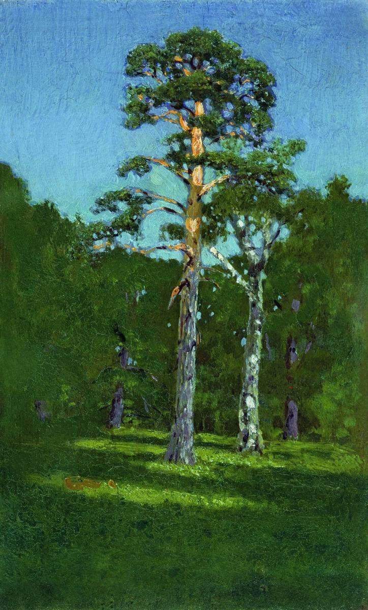 Arkhip Ivanovich Kuindzhi. Pine