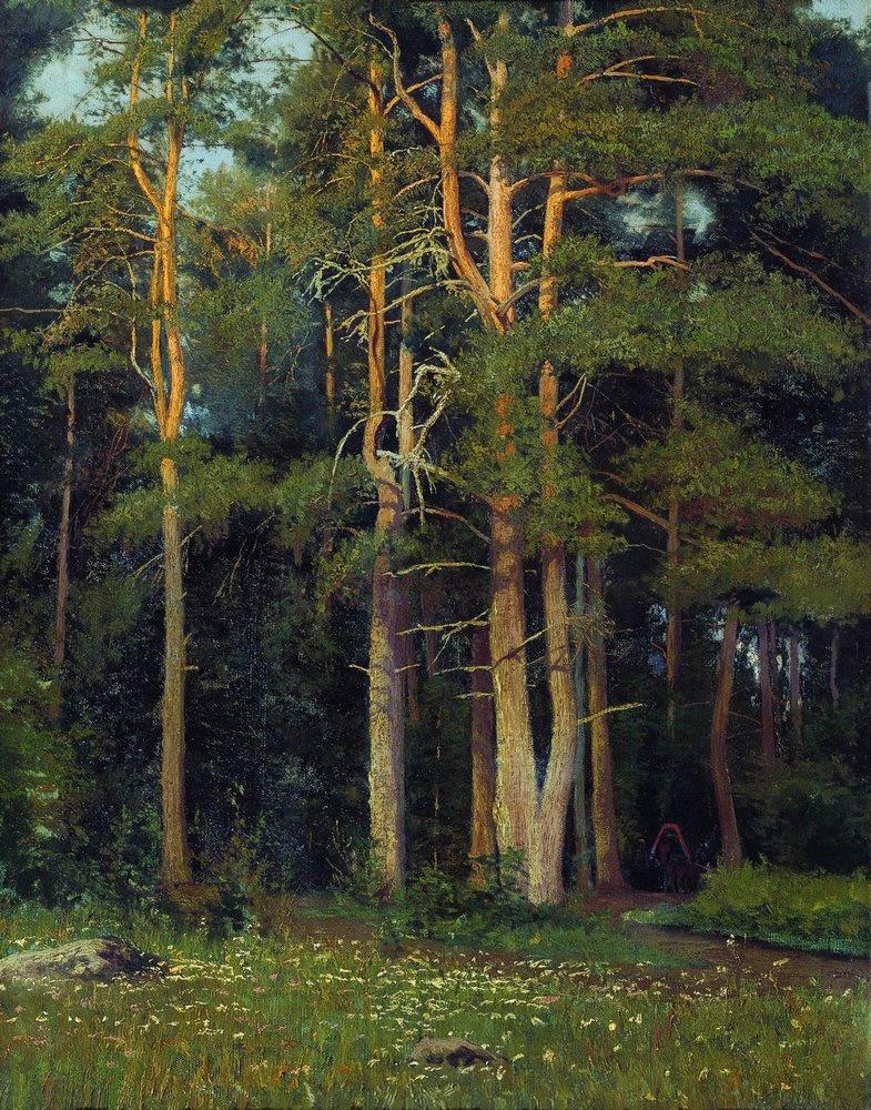 Ivan Shishkin. Pine forest at Ligula