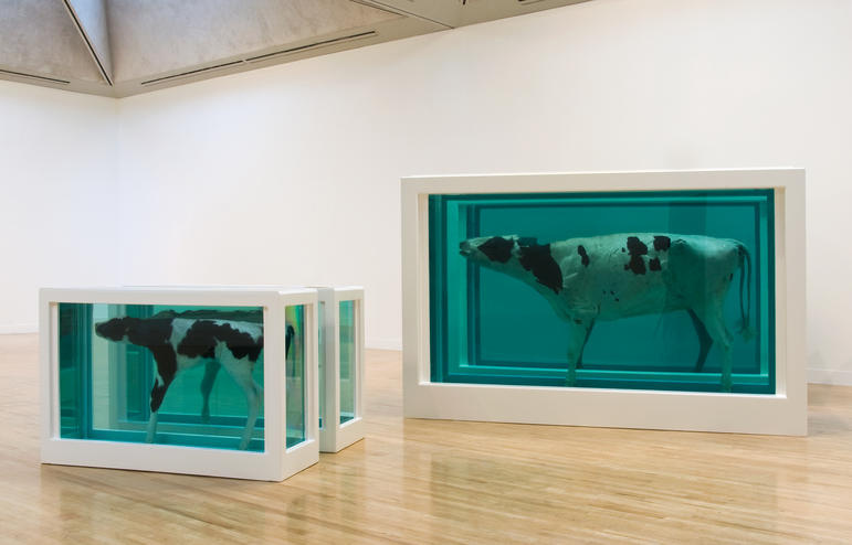 Damien Hirst. Mother and Child (Divided)