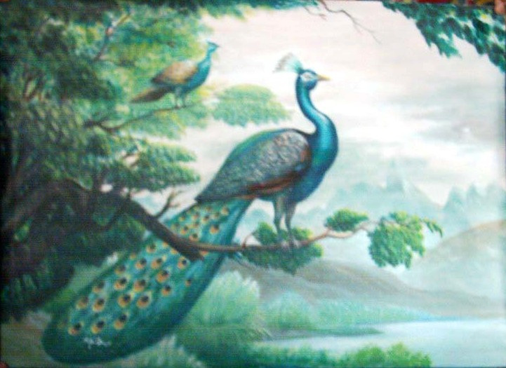AbdulSalam. Peacock on a Tree