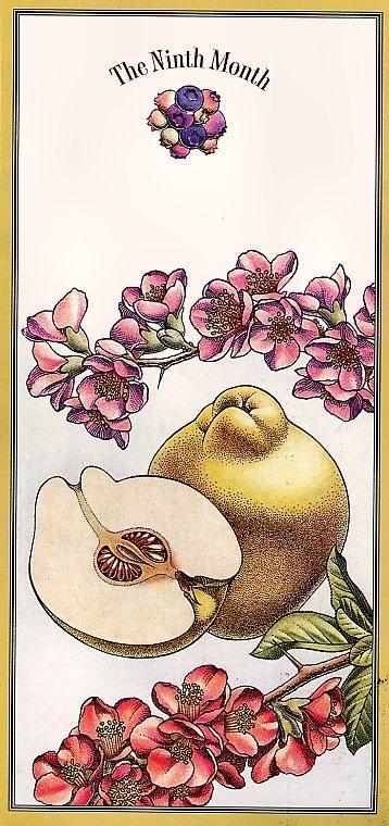 Цветочный календарь. Сентябрь