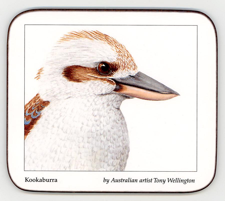 Tony Wellington. Kookaburra