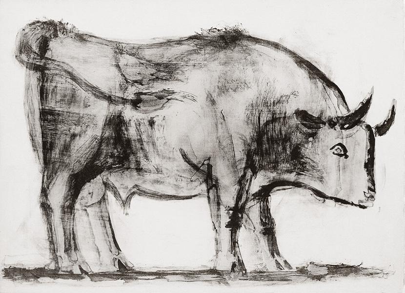 Пабло Пикассо. Бык. Стадия 1