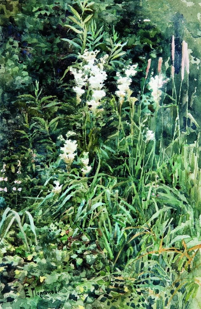 Elena Dmitrievna Polenova. Flowers