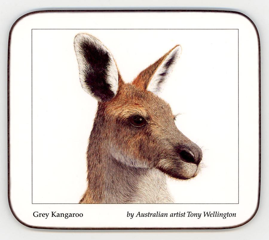 Tony Wellington. Kangaroo