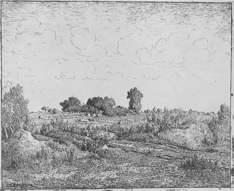 Пьер Этьен Теодор Руссо. Вишневое дерево на равнине Бьо