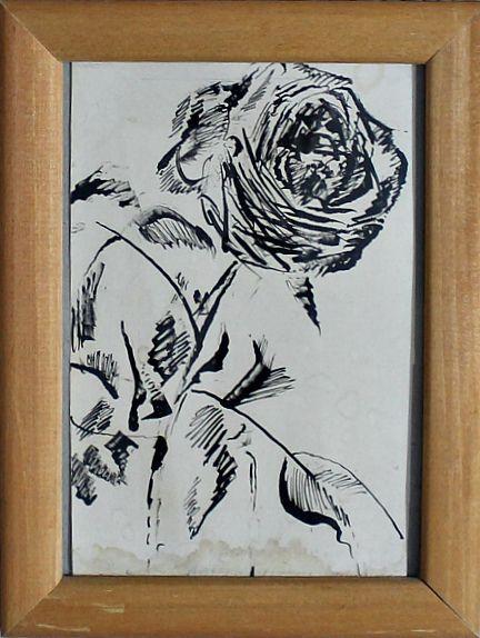 Nikita Evgenievich Charushin. Rose flower
