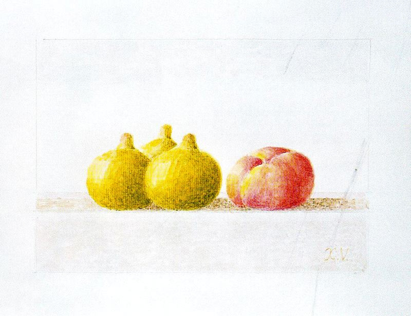 Javier Waltz. Fruit