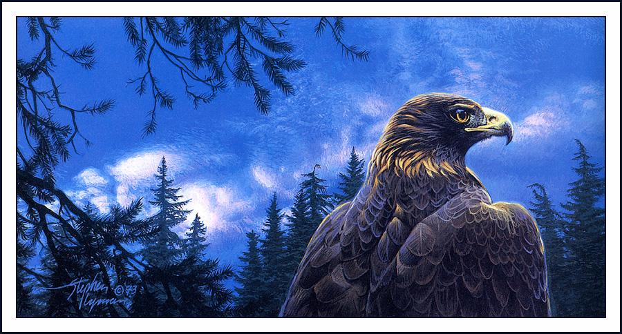 Стивен Лиман. Орел